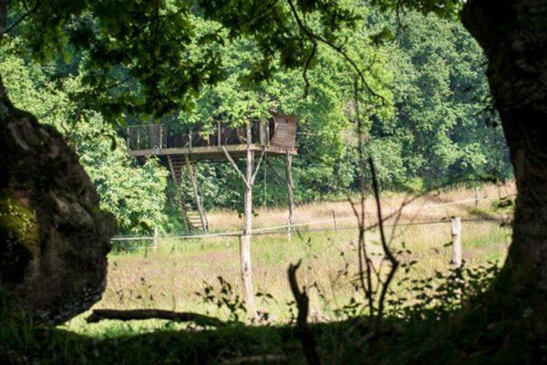 Cabane dans les arbres Dihan Evasion