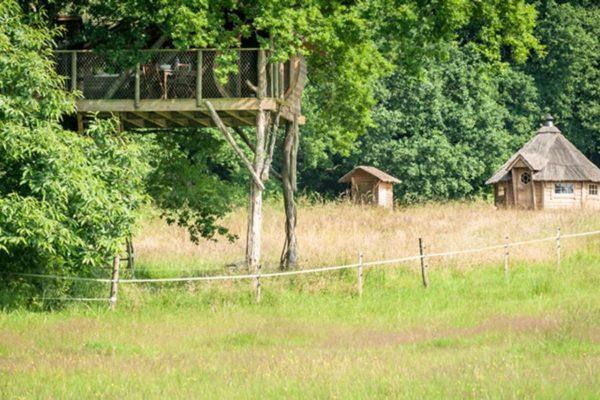 Cabane dans les arbres Ploemel